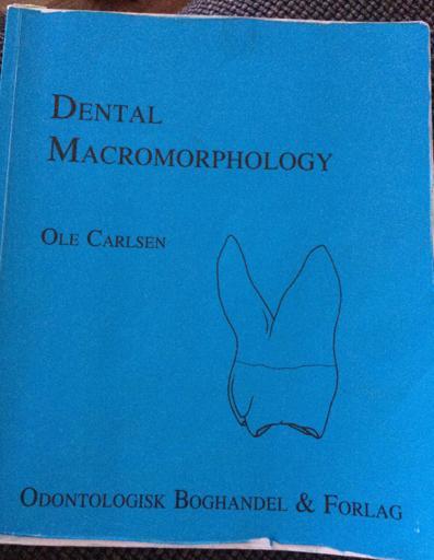 Dental Macromorphology